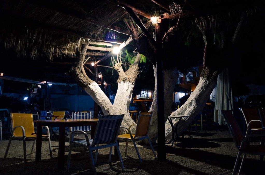Tree lights, Paleochora, Crete