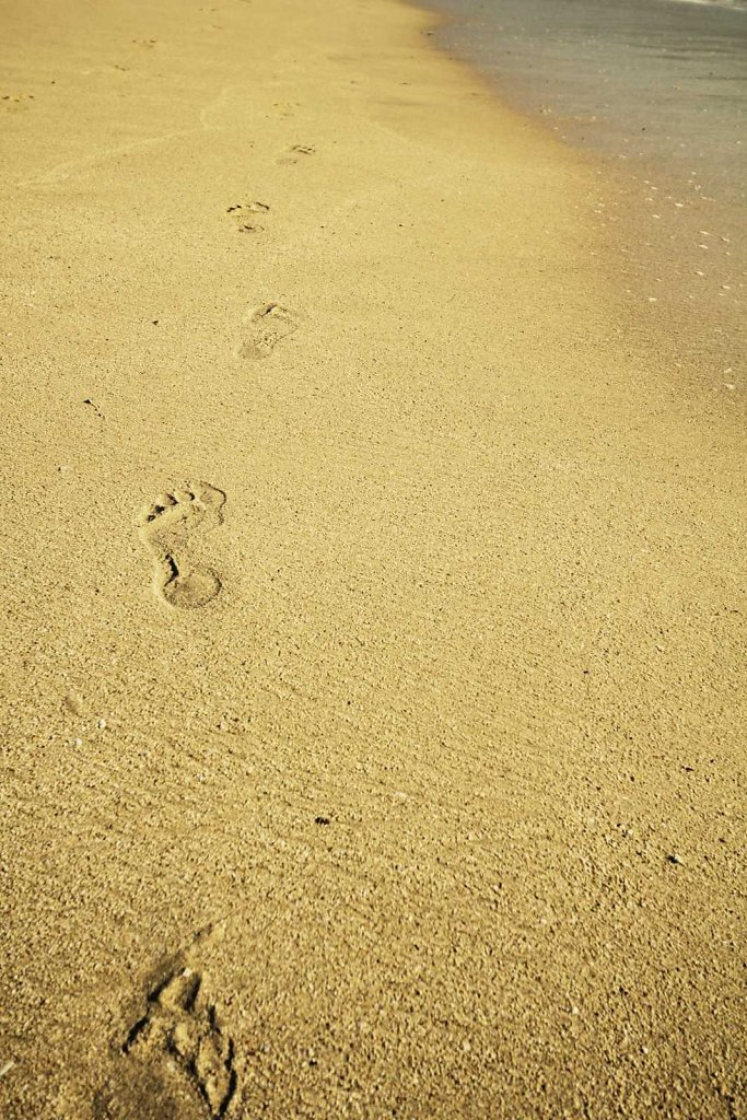 "The obligatory ""steps on the beach"" photo."