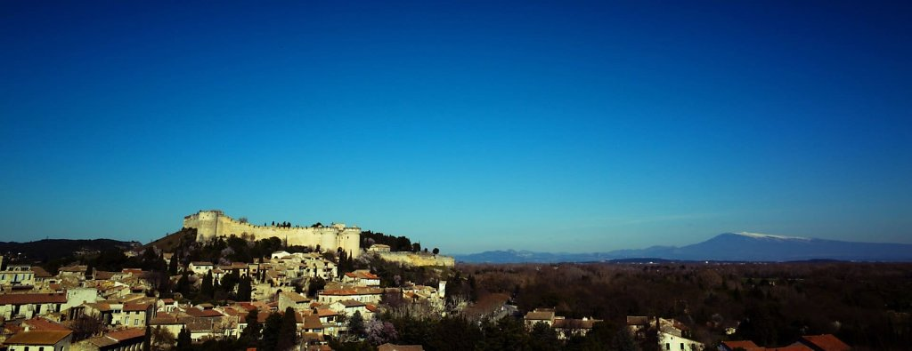 Fort Saint André seen from Avignon
