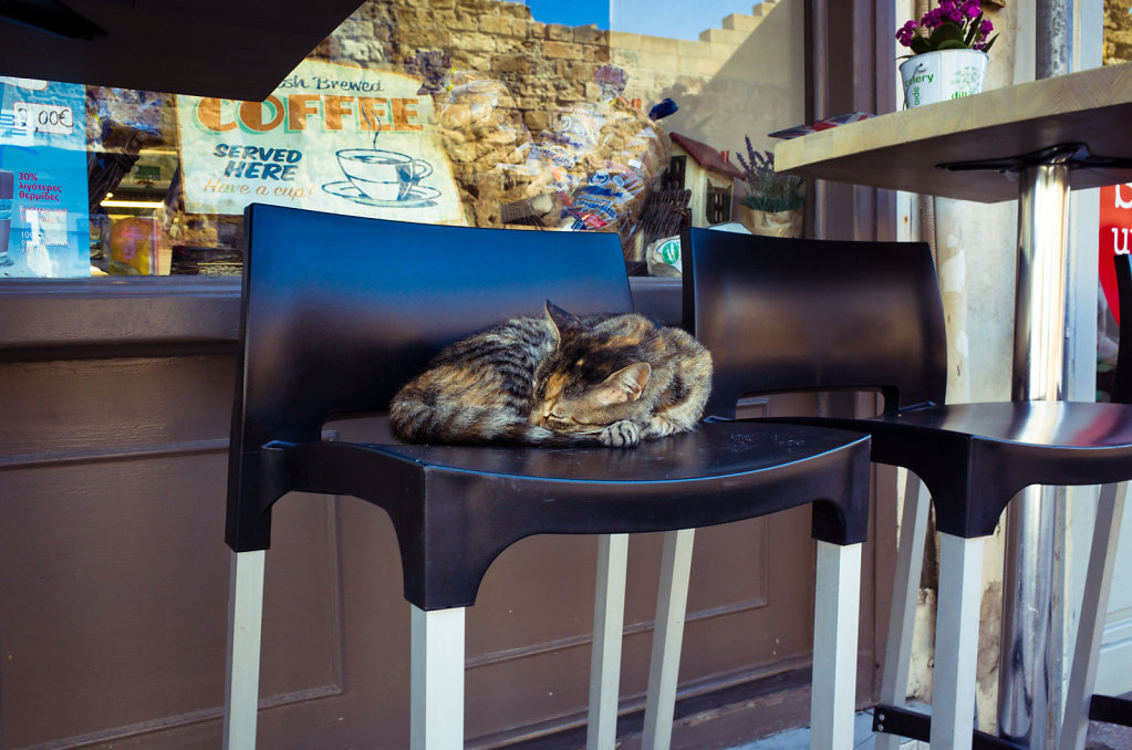 Cretan cat takes a nap after coffee